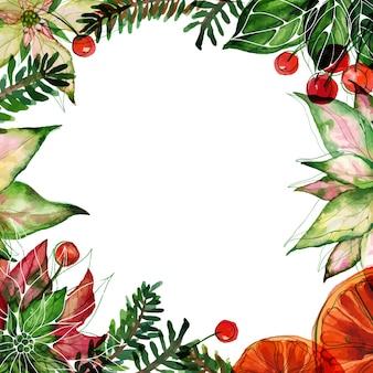 수채색 포인세티아와 오렌지, 붉은 열매가 있는 크리스마스 텍스트 공간 사각형 프레임