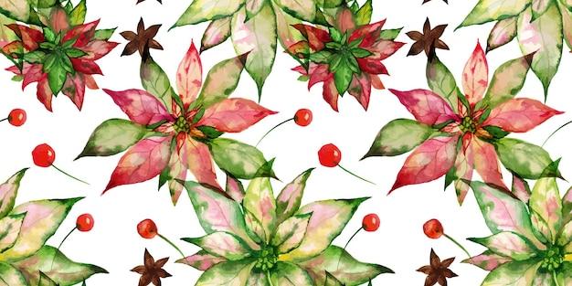 크리스마스 추적 수채화 꽃 원활한 패턴 포인세티아와 아니스와 겨울 열매