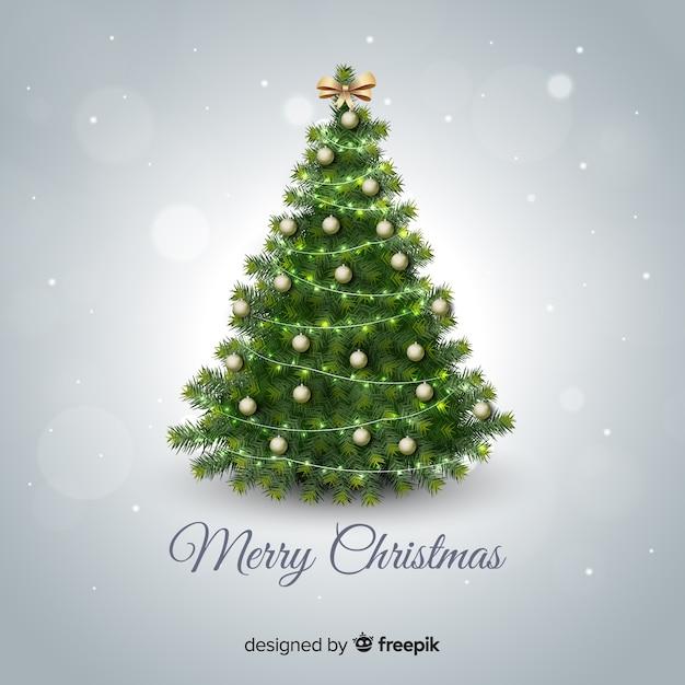 Charming Christmas Tree Background