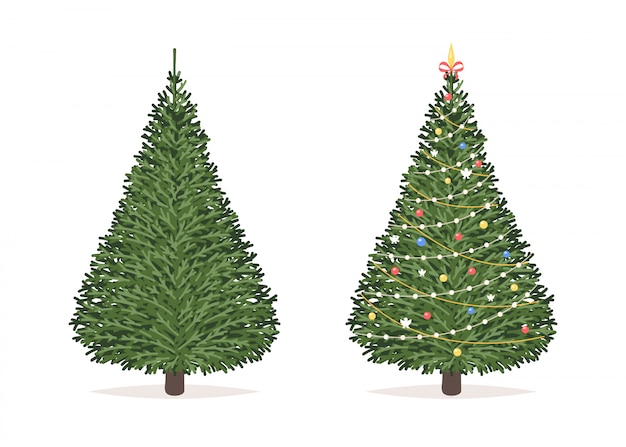 Christmas tree before and after