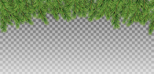 Christmas tree branches for merry christmas and happy new year background