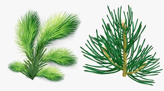 クリスマスツリーの枝セット