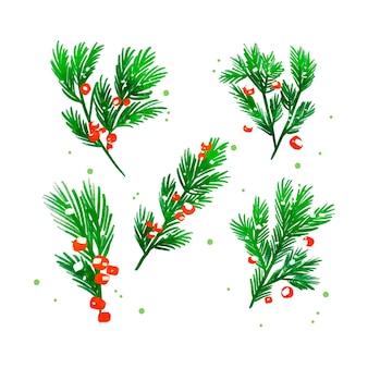 Рождественская елка ветви акварель фон