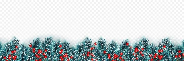 ヒイラギの果実とクリスマスツリーの雪とクリスマスツリーの枝