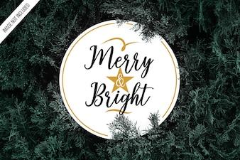 Christmas typogaphy background