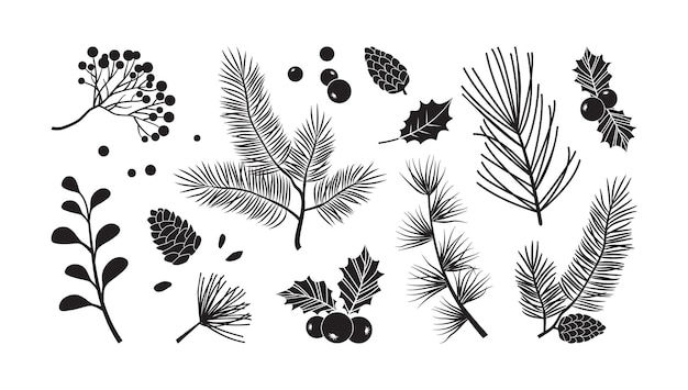 크리스마스 벡터 나뭇가지, 나무, 전나무, 솔방울, 상록수 세트, 휴일 장식, 검은 겨울 식물, 흰색 배경에 분리된 잎, 나뭇가지. 자연 그림