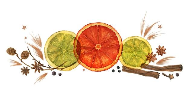 オレンジとコーンとシナモンと白い背景の上のアニスとクリスマスの水彩画の構成