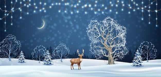 鹿とクリスマスライトのクリスマス冬の夜の風景