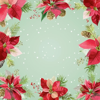 Christmas winter poinsettia flowers background, card or banner with place for your text
