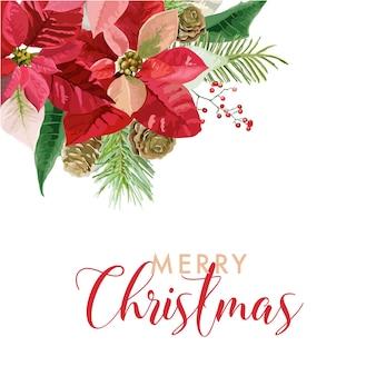 あなたのテキストのための場所とクリスマス冬のポインセチアの花カードまたは背景