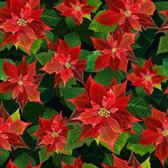 クリスマスの冬ポインセチアの花シームレスな背景、花柄のベクトルで印刷