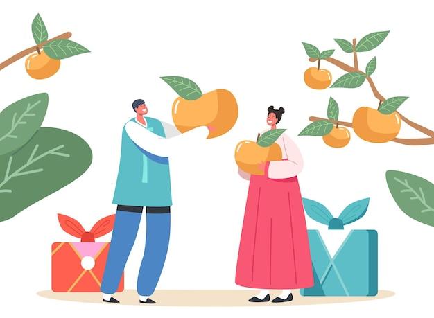 추석 떡 한국 전통 개념