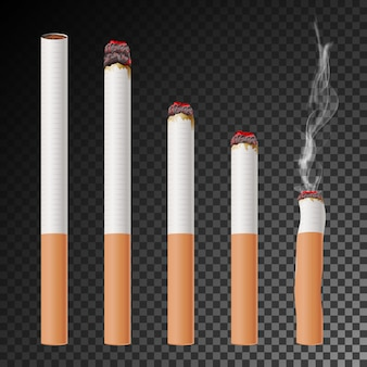 Cigarette set vector. realistic cigarette butt. different stages of burn.