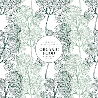 Cilantro. vector seamless pattern for design menu, packaging and recipes.