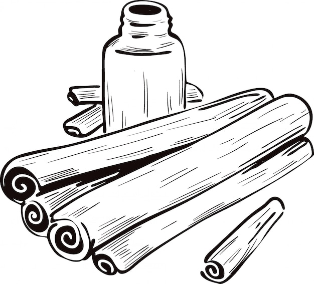 Cinnamon dry sticks and bottle with remedy isolated vector illustration