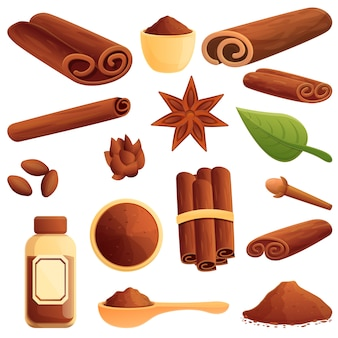 Cinnamon icons set. cartoon set of cinnamon vector icons