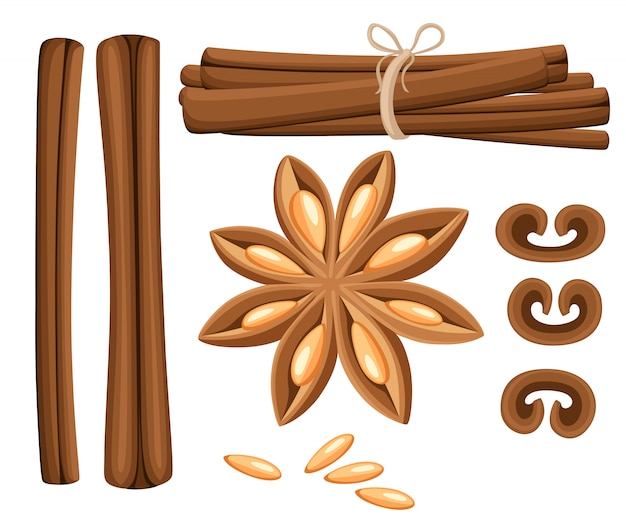 Cinnamon stick, star anise, anise and cardamom .  icons on white background