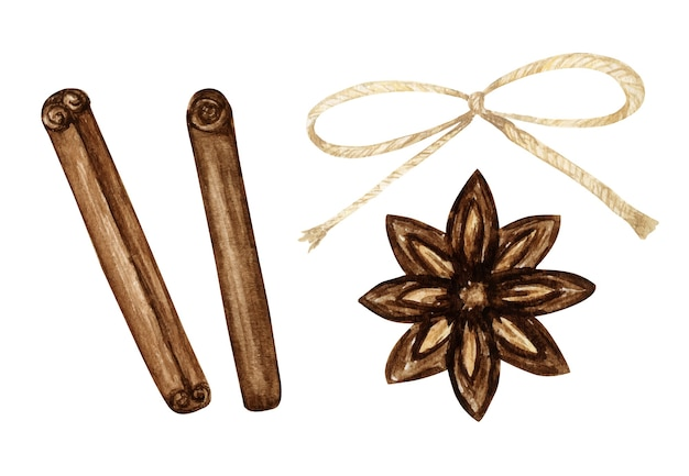 Cinnamon stick, star anise spice and rope bow watercolor illustration isolated