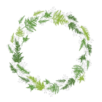 Circle frame of green leaves of thuja, cypress.