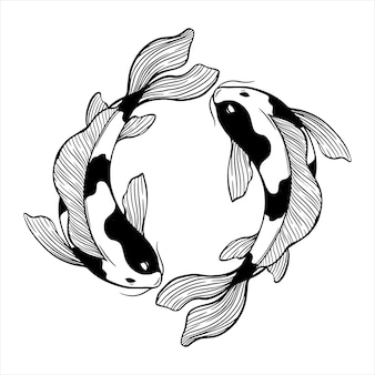 Circle koi fish with sketch or hand draw style