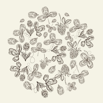 白い表面の手描きのベクトル図に美しいベリーを繰り返すとホップ落書きの円パターンの束