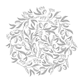 Circle pattern olive blossom doodle with repeating beautiful berries on white hand drawing illustration