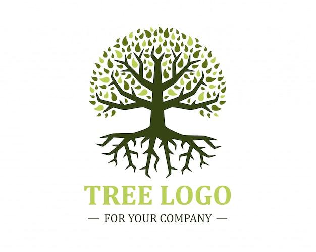 白い背景に分離されたサークルツリーのロゴ。クラシックなデザイン。