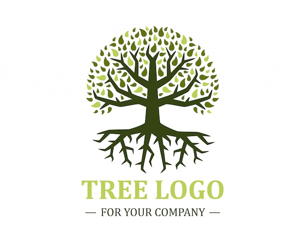 Circle tree logo isolated on a white background. classic design.