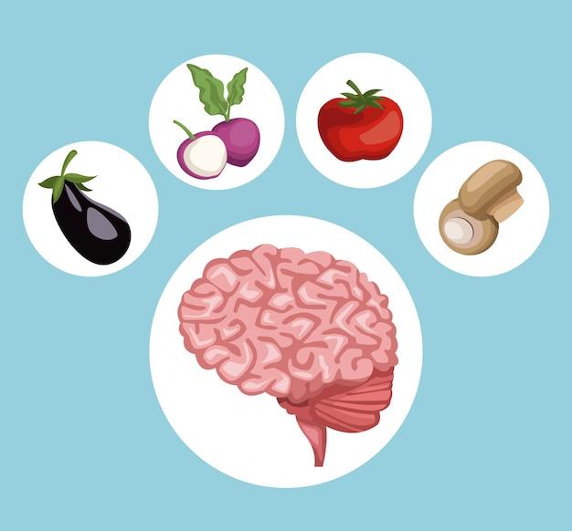 Circular frame brain organ and vegetables healthy food icons