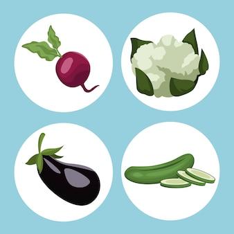Circular frame vegetables healthy food