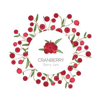 白い背景にクランベリーの手描きの円形ラベルまたはタグテンプレート。赤い森の北方のベリーと葉で飾られたデザイン要素。エレガントでカラフルなリアルなベクトルイラスト