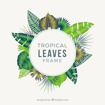 Circular realistic tropical leaves frame