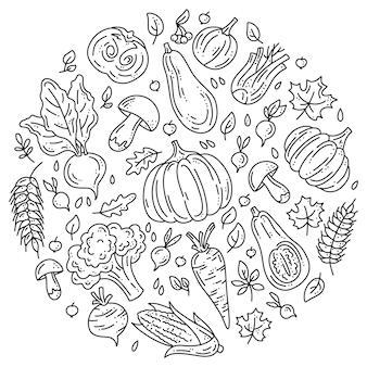 가을 수확을 위한 야채 아이콘의 원형 세트