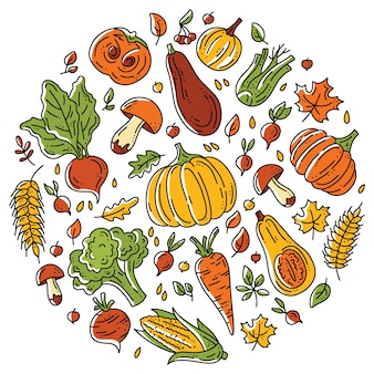 Circular set of vegetables and mushrooms for the autumn harvest