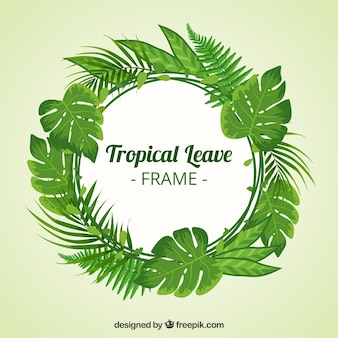 Circular tropical leaves frame