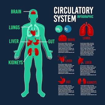 Sistema circolatorio con immagini e testo infografica