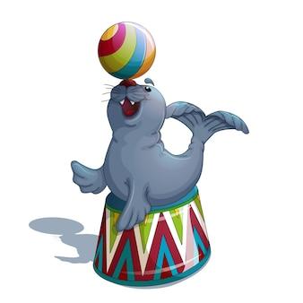 Circus seal juggles the ball.