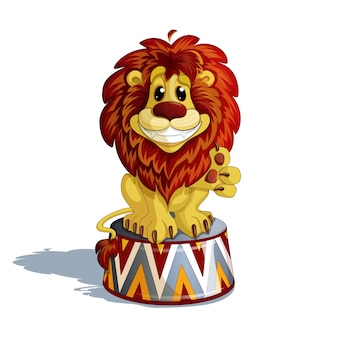 Circus trained lion