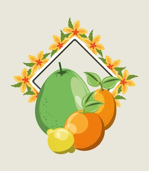 Citric fruits and decorative frame with tropical flowers