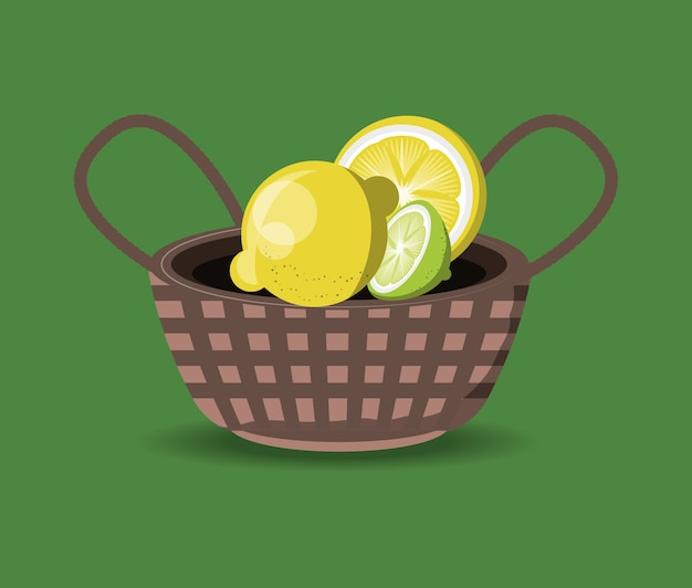 Citric fruits design with basket