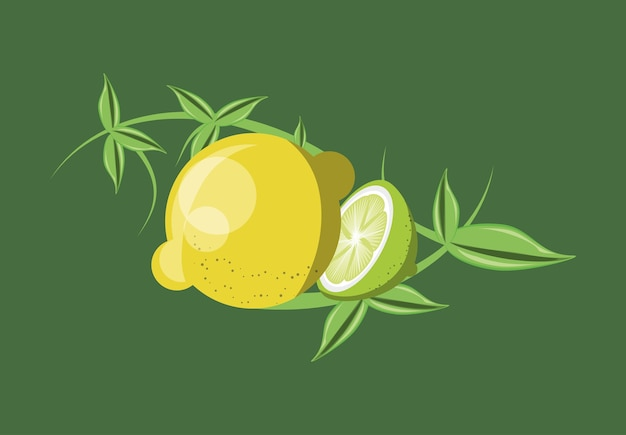 Citric fruits design with lemons and leaves