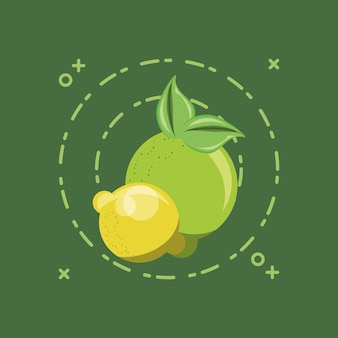 Citric fruits design with lemons