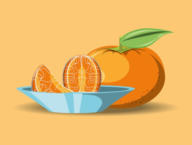 Citric fruits design with tangerine and dish