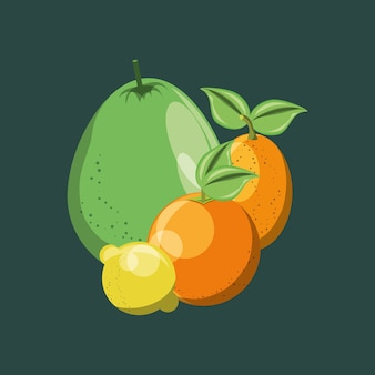 Citric fruits over green background