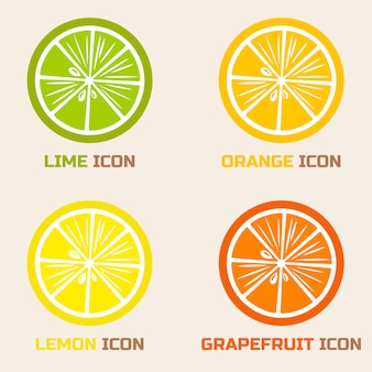 Citrus fruit slices: lime, orange, lemon, grapefruit
