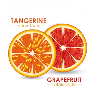 Цитрусовый фрукт