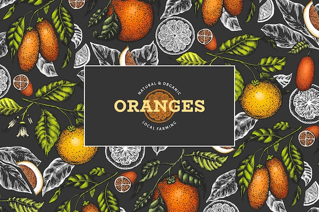 Citrus fruits label in blackboard style