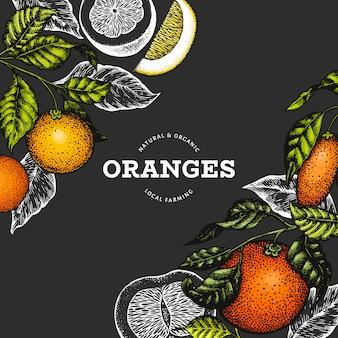 Citrus fruits template