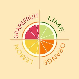 柑橘類のロゴ、アイコン、エンブレム。レモン、ライム、オレンジ、グレープフルーツ。さまざまな果物のスライスのジューシーなセット。フラットなデザイン。ベクトルイラスト。