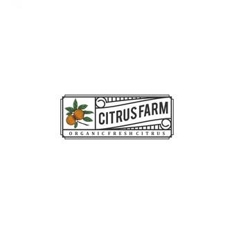The citrus logo, with a vintage style  and fresh citrus elements
